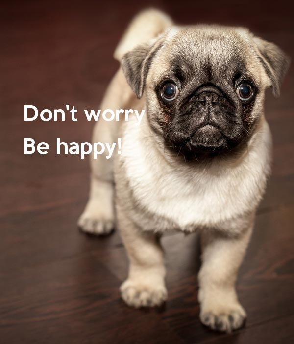 Don't Worry — Be Happy
